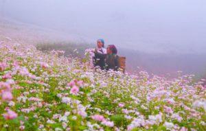 Tam Giác Mạch thu hút rất nhiều khách du lịch hàng năm