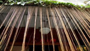 Cây dây tơ hồng Thái trang trí rất bắt mắt và ấn tượng