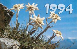 Cây hợp tuổi giáp tuất 1994