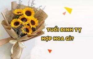 Tuổi đinh tỵ hợp với hoa gì
